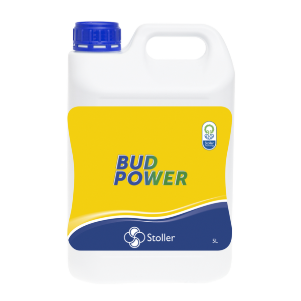 BUD POWER2