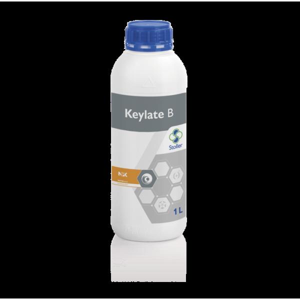 KEYLATE_B2-min