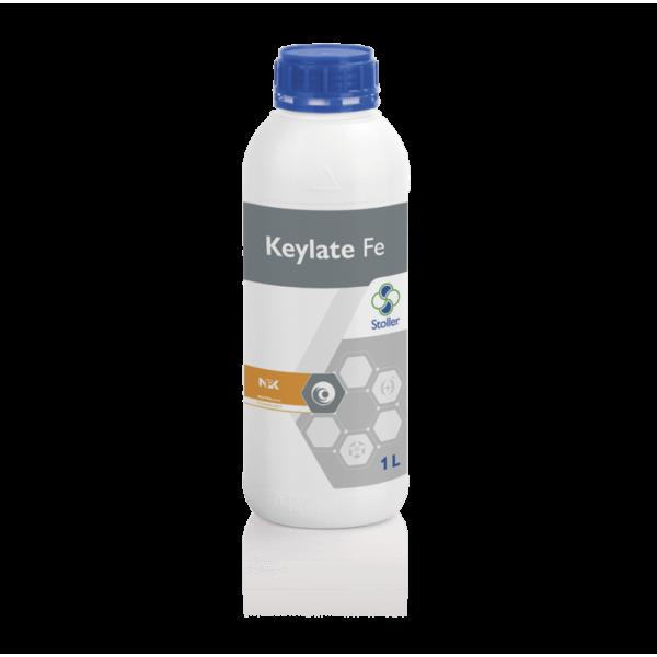 KEYLATE_FE-min