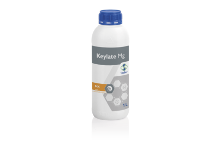 Keylate Mg