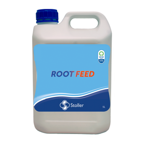 rootfeed