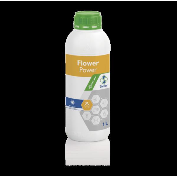 FLOWER-min